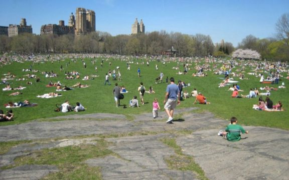 Sheep Meadow and Great Lawn, in Central Park