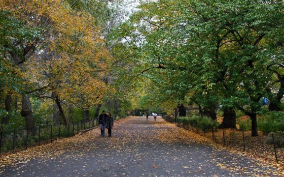 Places to see in a day in Central Park
